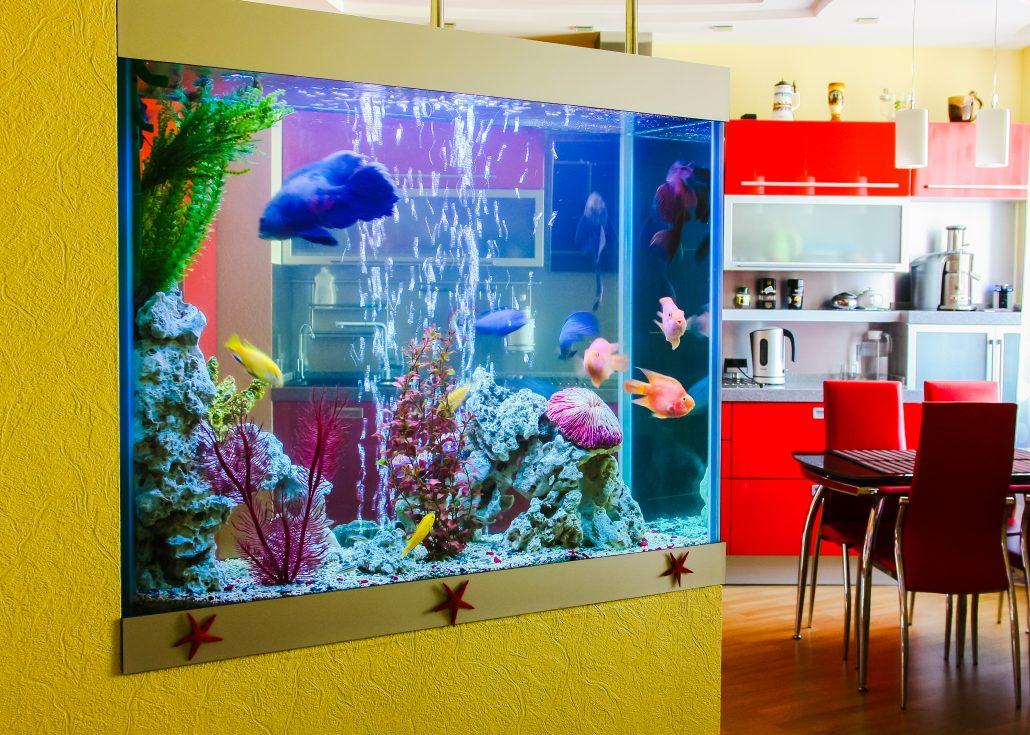 Design Aquarium Kast : Aquarium of fish to move no problem ayer moving storage ayer ma